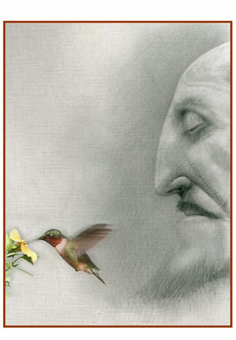 HW-hummingbird.jpg