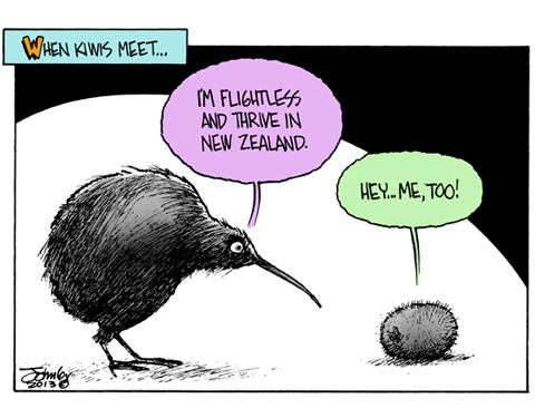 KIWI.jpg
