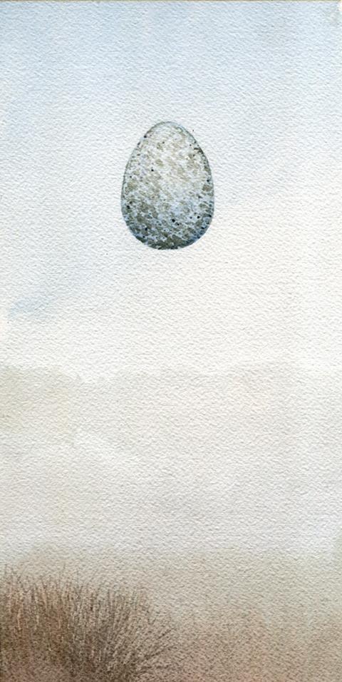 Ravven-egg.jpg