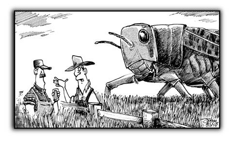 SW-farmers.jpg